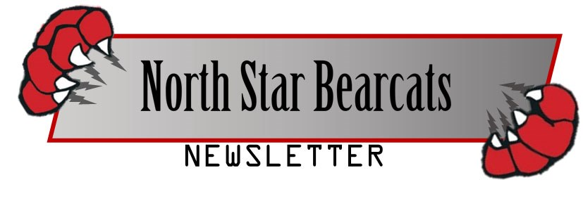 NS Letterhead Logo